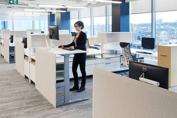Top 3 projects: Mandrake offices with Herman Miller adjustable height desks